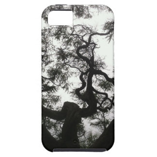 Angel Tree iPhone 5 Cover