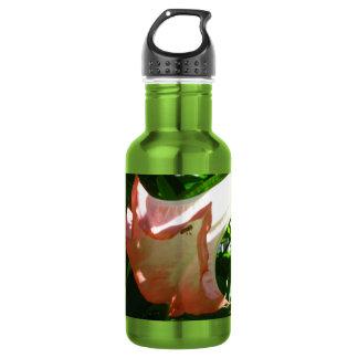 Angel Trumpet Flower 532 Ml Water Bottle