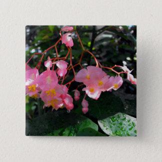 Angel Wing Begonias 15 Cm Square Badge