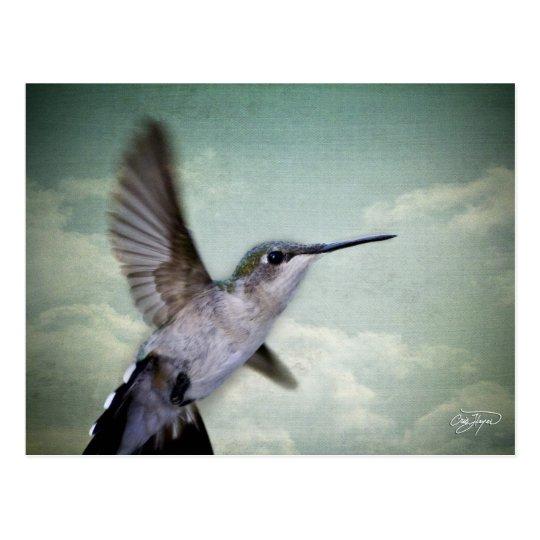 Angel Wings - The Series Postcard