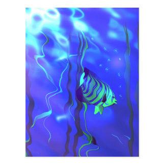 Angelfish Blues Postcard