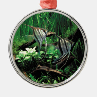 ANGELFISH METAL ORNAMENT
