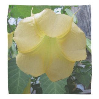 Angels Trumpet Golden Yellow Flower Do-rags