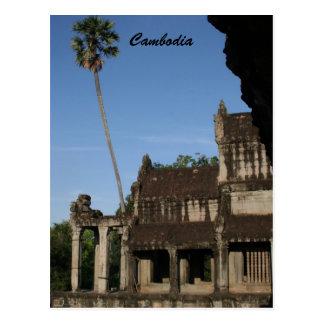 angkor tree postcard
