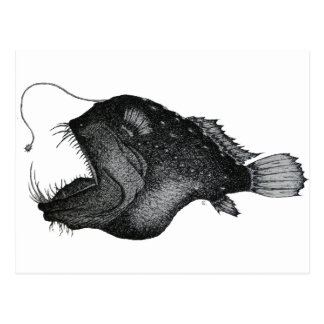 Anglerfishes Postcard