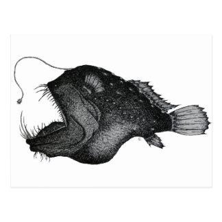 Anglerfishes Postcard