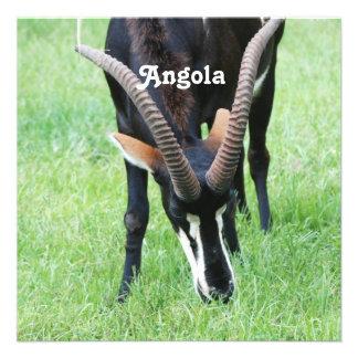 Angola Sable Antelope Invite
