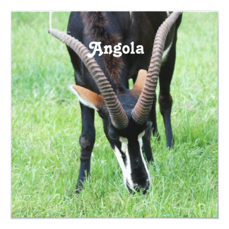 Angola Sable Antelope 5.25x5.25 Square Paper Invitation Card