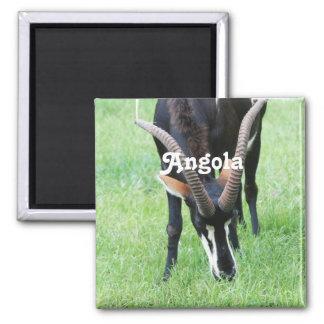 Angola Sable Antelope Square Magnet