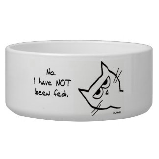 Angry Cat has NOT been fed! Pet Water Bowls