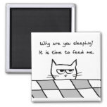 Angry Cat Wants You Out of Bed Fridge Magnets