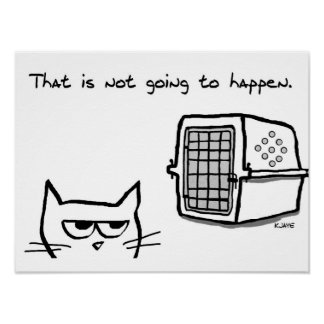 Angry Cat will NOT be going to the Vet Poster