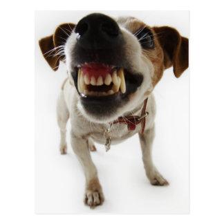 Angry dog postcard