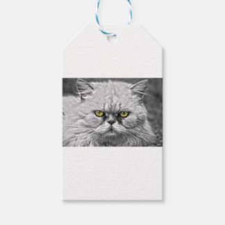Angry Golden Cat Eyes Gift Tags