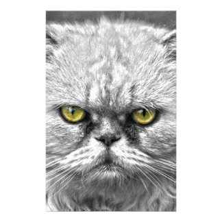 Angry Golden Cat Eyes Stationery