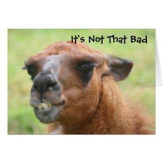 Angry Llama Humourous 30th Birthday Card
