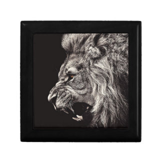Angry Male Lion Gift Box