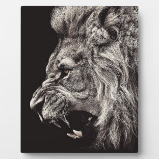 Angry Male Lion Plaque