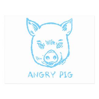 angry pig postcard