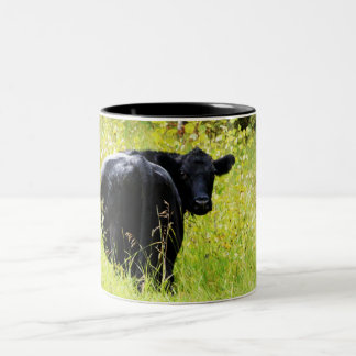 Angus Steer in Tall Yellow Grass Coffee Mug