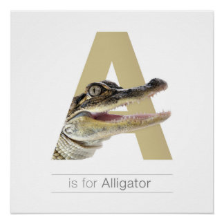 Animal Alphabet Nursery Wall Art. A - Alligator. Poster