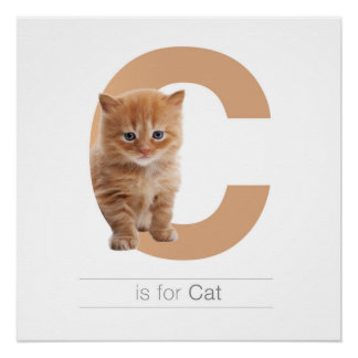 Animal Alphabet Nursery Wall Art. C is for Cat.