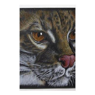 Animal Art Stationery