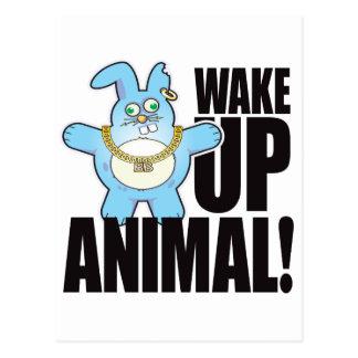 Animal Bad Bun Wake Postcard