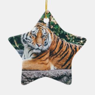 Animal Big Cat Safari Tiger Wild Cat Wildlife Zoo Ceramic Ornament