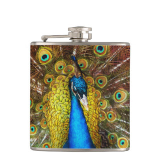 Animal - Bird - Peacock proud Hip Flask