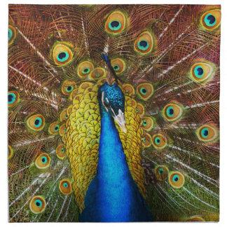 Animal - Bird - Peacock proud Napkin