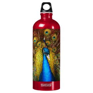 Animal - Bird - Peacock proud Water Bottle