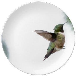 Animal Bird Ruby-throated Hummingbird Porcelain Plates