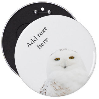 Animal Bird Snowy Owl Looking at Me 6 Cm Round Badge