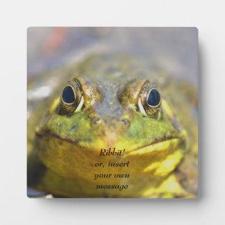 Animal Bullfrog greenish yellow with big eyes Photo Plaques