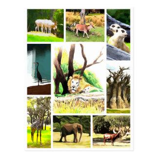 Animal Collage Postcard