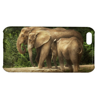 Animal - Elephant - Tight knit family iPhone 5C Covers