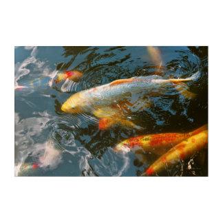 Animal - Fish - Bestow good fortune Acrylic Wall Art