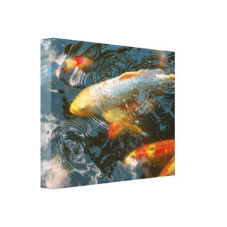 Animal - Fish - Bestow good fortune Canvas Print