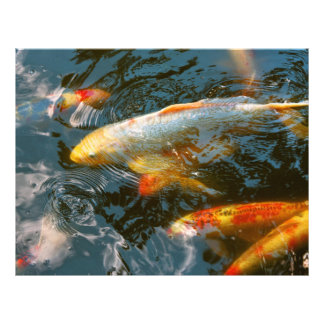 Animal - Fish - Bestow good fortune Flyer