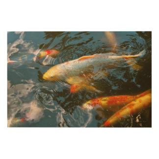 Animal - Fish - Bestow good fortune Wood Print