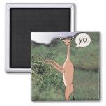 Animal Greeting Magnet (Gerenuk)