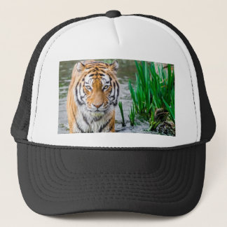 Animal, hat, for sale ! trucker hat
