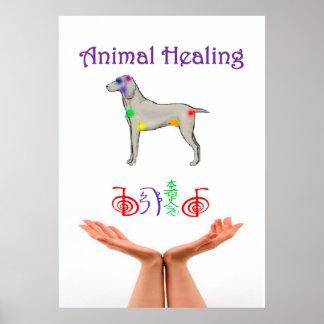 Animal Healing Poster