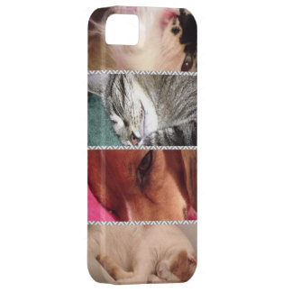 Animal Iphone5 Cell Phone Case