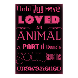 Animal Lover Quote Black and Pink Poster