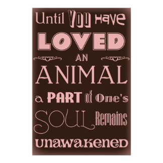 Animal Lover Quote Brown and Pink Poster