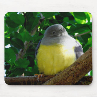 Animal Mousepad Series - Chubby Bird