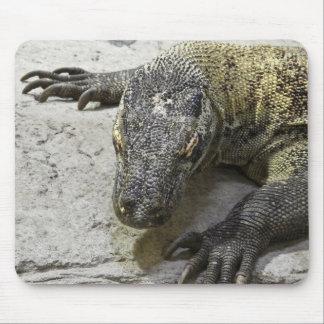 Animal Mousepad Series - Komodo Dragon