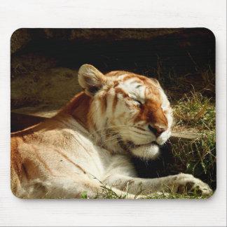 Animal Mousepad Series - Sleeping Tiger